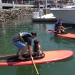 Land and Sea Festival Paddleboarders